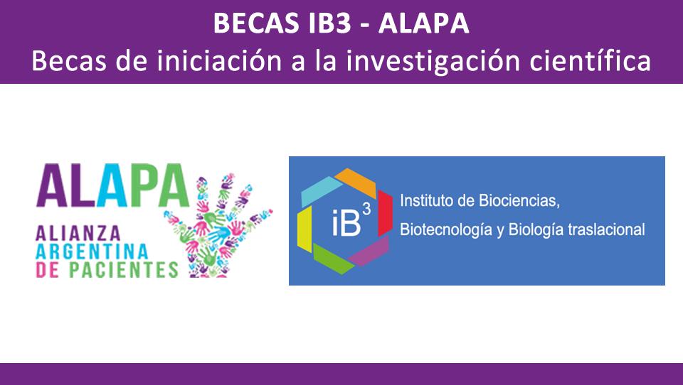 Becas ALAPA – IB3